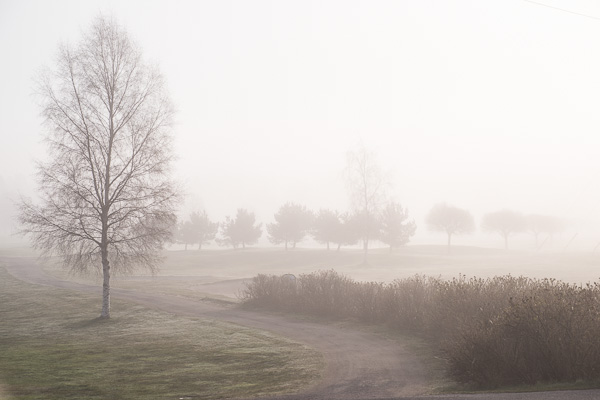 2014-04-19 Kolardammen_golfbanan_51